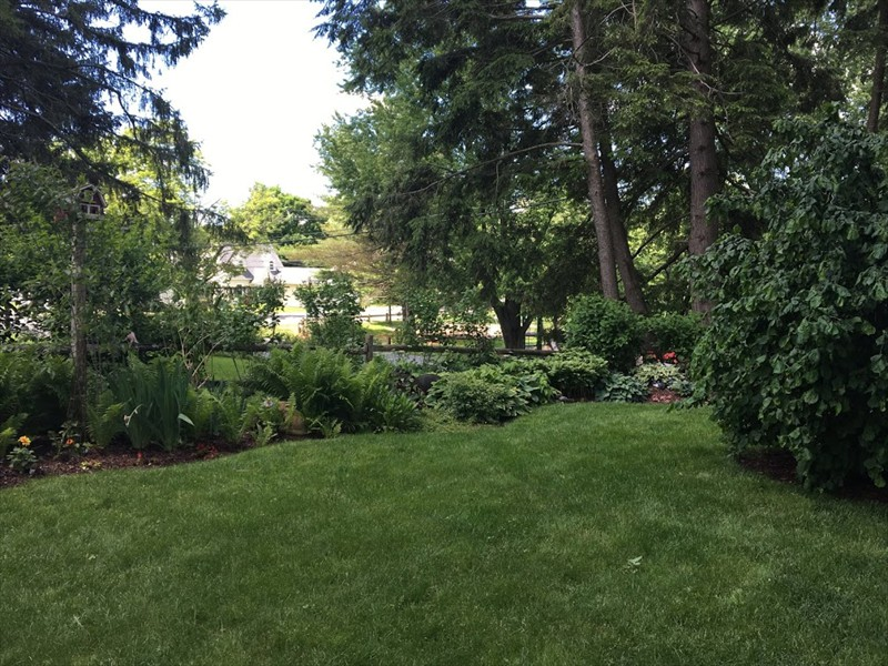 View Some Of Our Landscape Designs Below IMG 3284